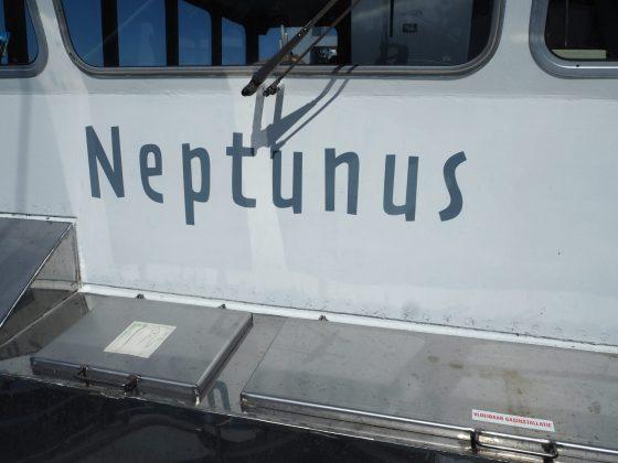 De Neptunus